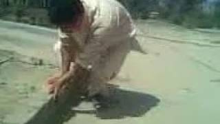 crazy jumper from d.i.khan