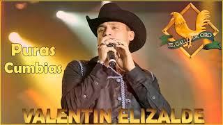 Valentin Elizalde Puras Cumbias - 20 Mejor Exitos
