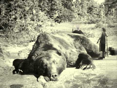 World's Biggest Monster Bear 4 - YouTube