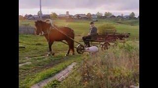 Лёнин конь и Лёня (2006)