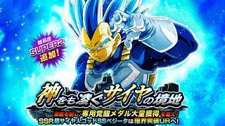 MUST SEE NEW SSBE EVOLUTION VEGETA BOSS STAGE EVENT! Dragon Ball Z Dokkan Battle | DBZ