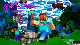 Minecraft PS3 Live