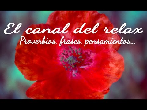 Musica Relajante Con Frases De Alegria Y Proverbios De Paz Amor Y