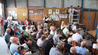DGNZ 2016 3yr Sale - Lot 3 being auctioned off