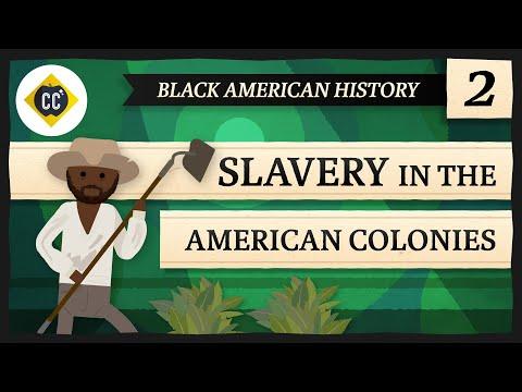 Slavery in the American Colonies: Crash Course Black American History #2