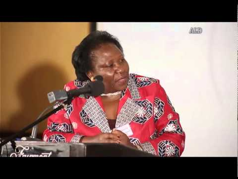 ALD panel session on Rural Electrification in Kenya