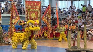 Lion dance championship held at international cultural festival in China