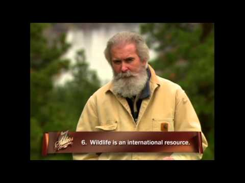 Opportunity For All -- The Story Of The North American Model For Wildlife Conservation