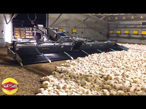 15 เครื่องจักรเกษตรกรรมสุดระห่ำที่คุณต้องอึ้ง (แบบนี้ก็มีด้วย)