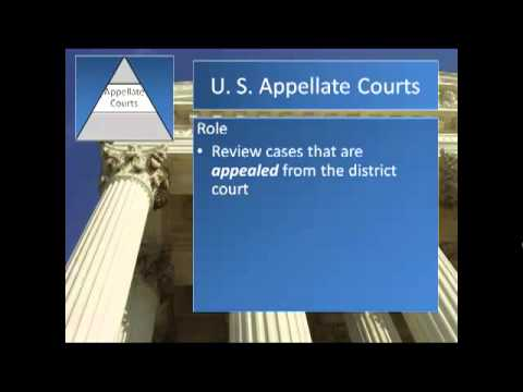 The Federal Court System Sec  8   2