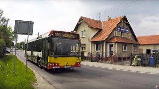 ПОЛОНУС! Школа Польского Языка и Культуры во Вроцлаве!