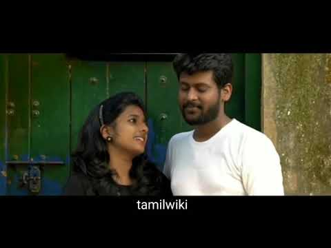 Vijay Tv Saravanan Meenatchi serial Today Rio Raj celebration New video