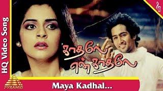 Maya Kadhal Video Song  Kadhale En Kadhale Tamil Movie Songs   Naveen  Roma  Pyramid Music