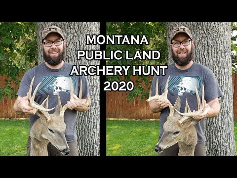Montana Public Land Whitetail Hunting - Archery Season (2020)