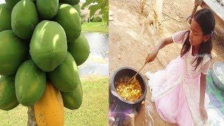 Video Green Papaya Cooking by My Daughter in My Village by Mana Vantalu download MP3, 3GP, MP4, WEBM, AVI, FLV Juni 2018
