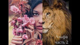 Кто такой Альфа мужчина и как стать его женщиной. Часть 2