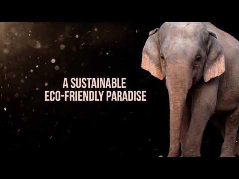 Elephant Refuge North America - Southeast United States