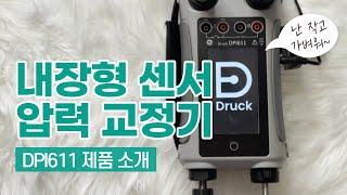DRUCK DPI611…