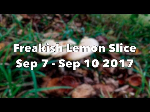 Freakish Lemon Slice: Sep 7- Sep 10 2017