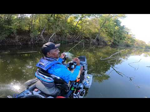 Creeks, Brush Pile And Standing Timber Crappie Fishing Tips