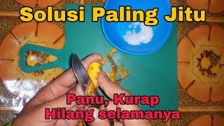 Doa Untuk Penyakit Kutu Air Dari Ust  Dhanu - Siraman Qolbu (3/7).