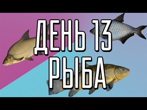 Диета на рыбе и овощах отзывы и результаты