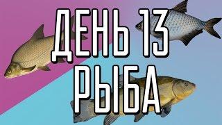 КАК ПОХУДЕТЬ (BLOG) // День 13 (Рыба)