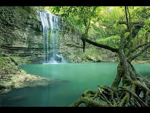 MUST SEE WATERFALLS IN JAMAICA   PART 2 - Travel Guide Video Slideshow with music