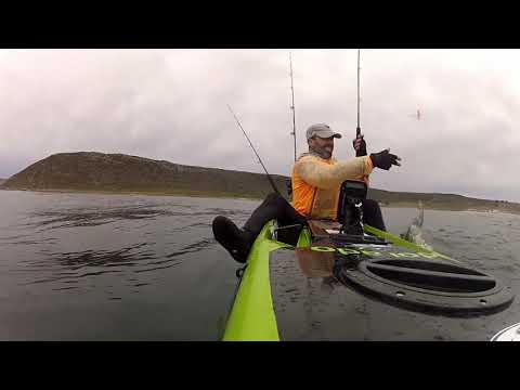 Kayak Fishing For Bonito In Cape Town South Africa Off Cape Point