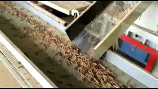 wood pellet production line in Linyi City