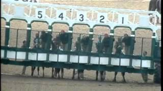 Video Spinaway Stakes 1992 - Pan & Head-On download MP3, 3GP, MP4, WEBM, AVI, FLV November 2017