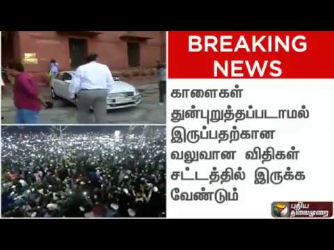 BREAKING NEWS: TN govt has authority to enact law on jallikattu: Centre