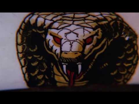 Cobra Opening To Movie Youtube