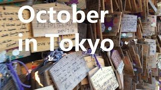 October in Tokyo - A Video For Matt