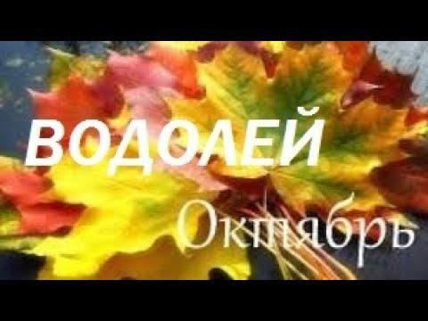20 любимых социальных сетей в России |