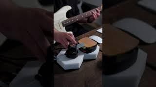 Cicada | Electric Guitar Feat. NRTHRN