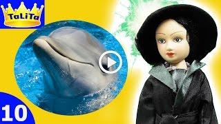 Видео с куклами ПРО ДЕЛЬФИНОВ Мультики для детей Для девочек куклы подруги Барби