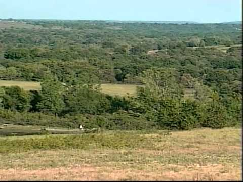 Bill Kurtis' Red Buffalo Ranch - YouTube