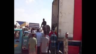 قناة السويس الجديدة : شركة كوكاكولا مصر توزع أكثر من 10000عبوة على عمال القناة