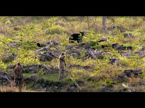 The Zone S3:E13- BC Bear and Nebraska Whitetail