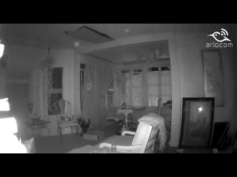 Orbs, Light Beings, caught on Arlo security camera