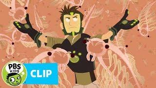 Wild Kratts: Shrimpy Chris thumbnail