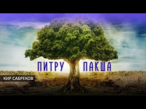 ПИТРУ ПАКША 2020/ Ритуал для предков
