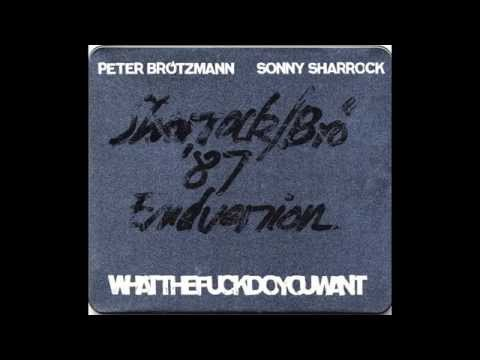 Peter Brötzmann & Sonny Sharrock - Whatthefuckdoyouwant 2