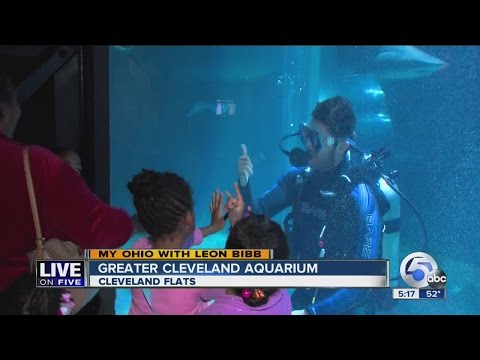 My Ohio | Greater Cleveland Aquarium Boasts Fish From Around The World