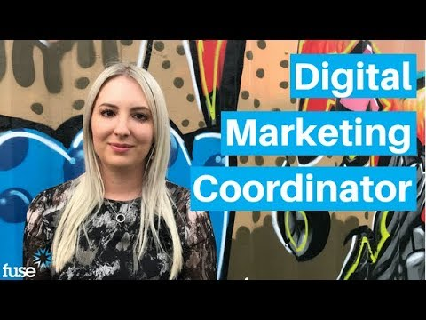 Fuse Job Opportunity: Digital Marketing Coordinator, Melbourne