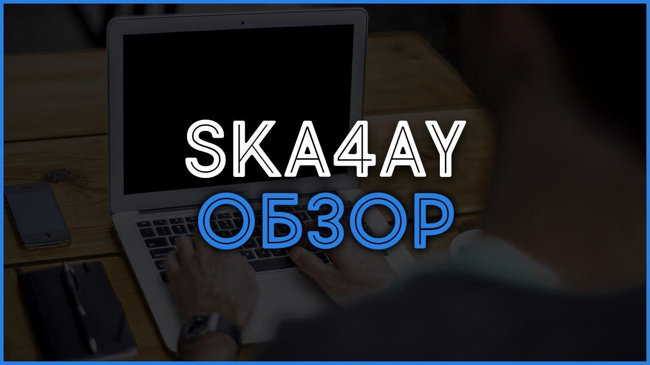 Файлообменник Ska4ay. Обзор, отзывы, выплаты, заработок в Интернете.