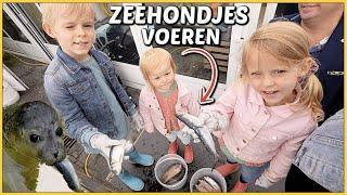 ZiEKE ZEEHONDJES REDDEN ZE UiT DE ZEE  | Bellinga Vlog #2159