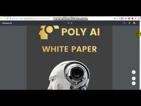 PolyNetwork ICO  The best ICO