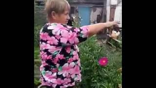 Газонная трава между грядками у Татьяны Ермаковой(Газонная трава между грядками у Татьяны Ермаковой Если вам понравилось видео, ставьте лайк! **************************..., 2016-07-27T06:31:19.000Z)